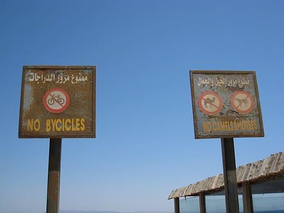 dahab egypt no camels sign