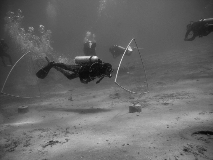 again, a diver doing things properly, this time the triangles