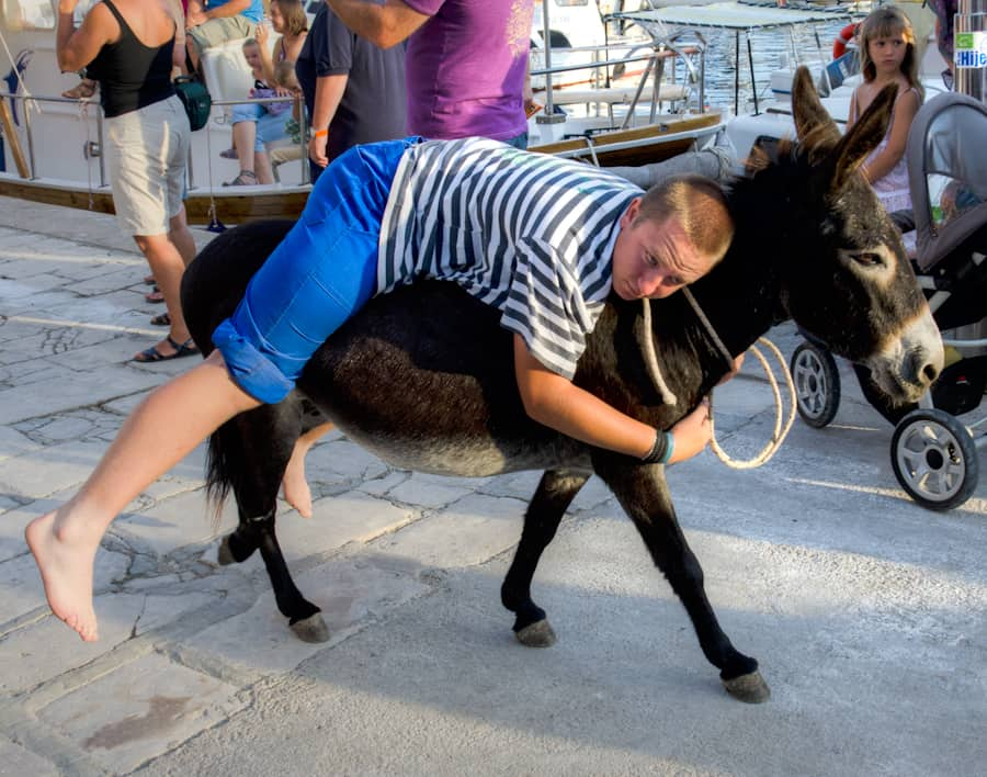Donkey Race Sali Summer Festival in Croatia
