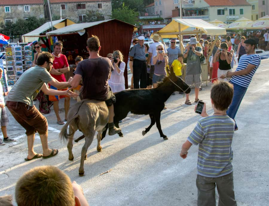 Donkey Racing in Croatia on the islands