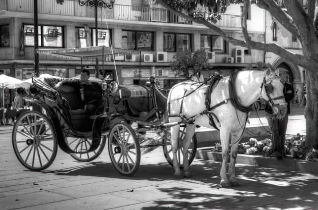 seville horse drawn carriage