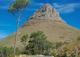 things to do in cape town africa lion&#039;s head mountain