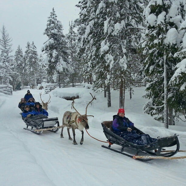 Some_folks_headed_out_for_an_afternoon_reindeer_sled_ride.__visitfinland