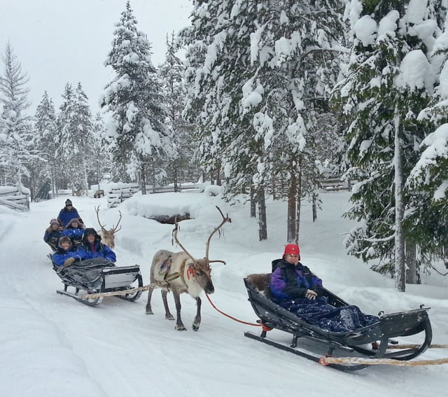 reindeer sleigh ride winter finland