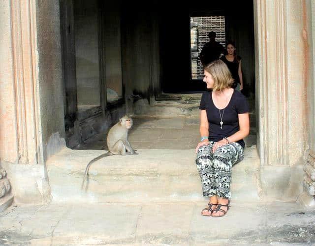 Angkor Wat Monkey - Siem Reap, Cambodia