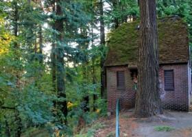 7 reasons why Portland, Oregon is weird