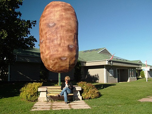 iu1854 prince edward island canada prince county oleary 14 foot potato displayed outside the potato museum and hall of fame