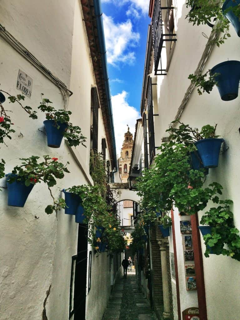 5 Things to do in Córdoba, Spain