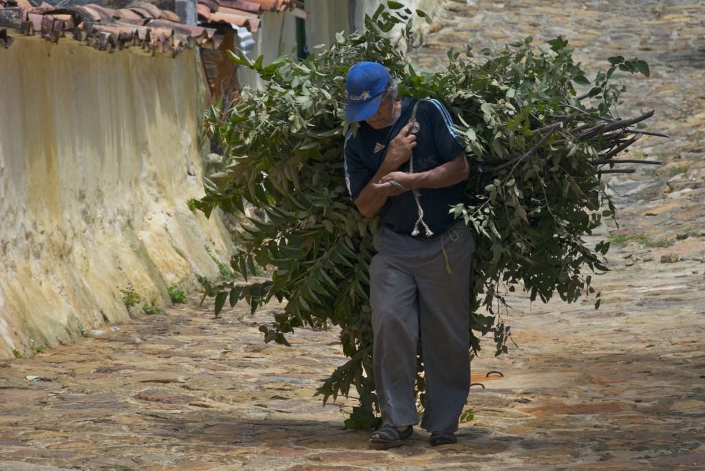photo of a man dragging crops home in Guane, Colombia