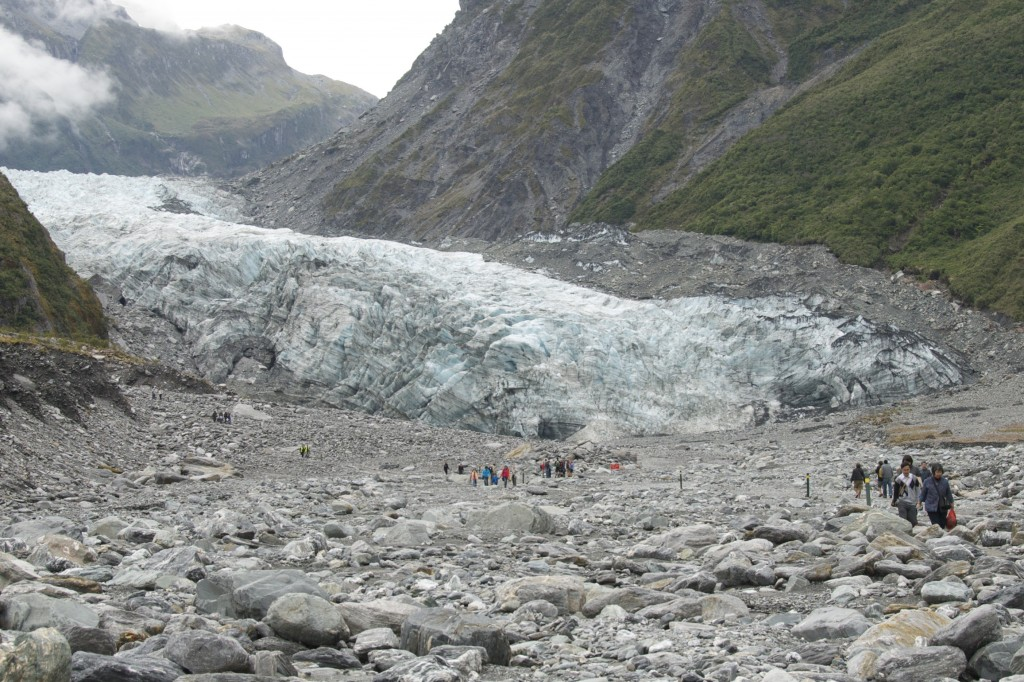 franz josef glacier, south island, new zealand