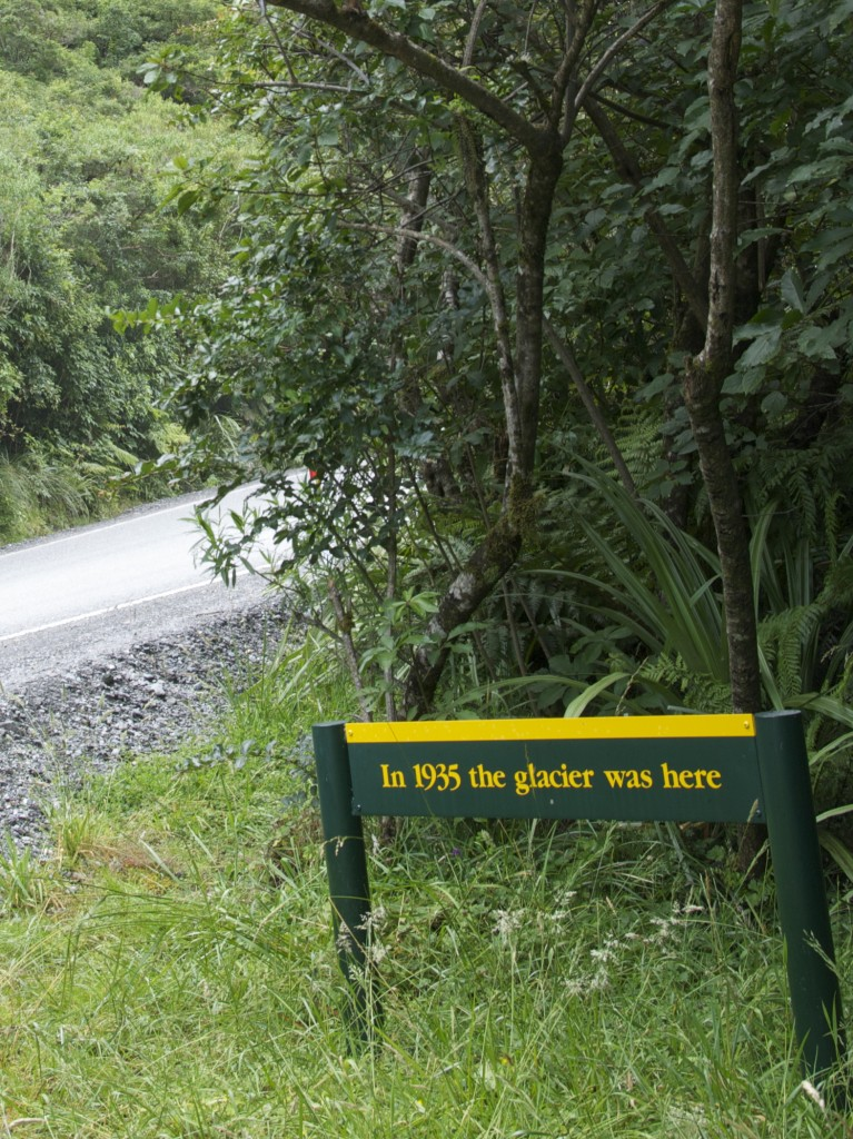 impact of global warming on franz josef glacier