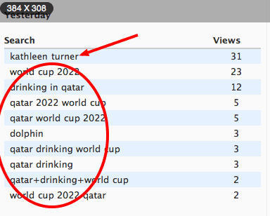 search results showing kathleen turner and qatar drinking rules