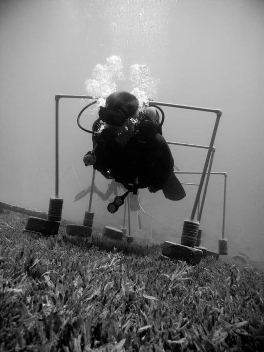 buoyancy scuba diving challenge dahab egypt red sea