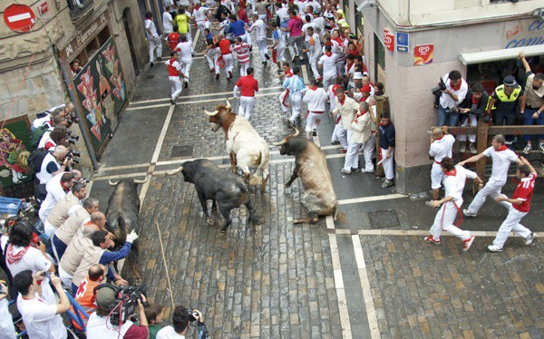 bull falls down in dead man's corner running of the bulls pamplona
