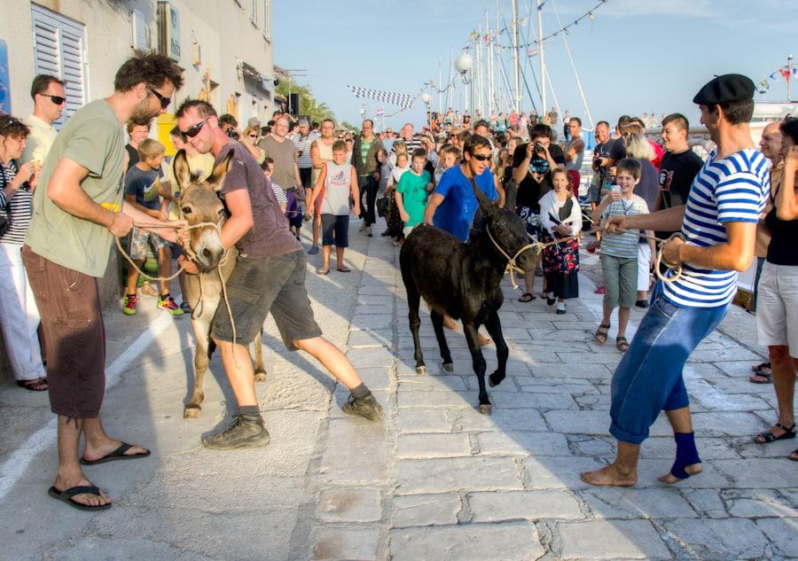 Donkey Racing in Croatia at Sali Summer Festival