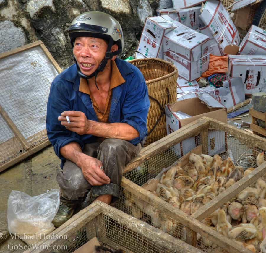 hmong man selling baby chicks vietnam market