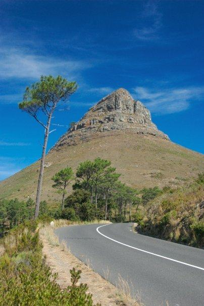 things to do in cape town africa lion's head mountain
