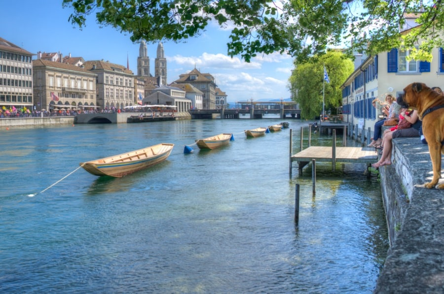 hdr zurich switzerland river with boats and dogs
