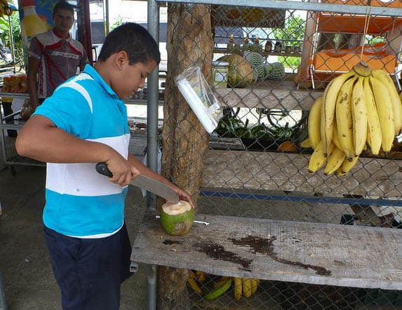 kid cutting coconut