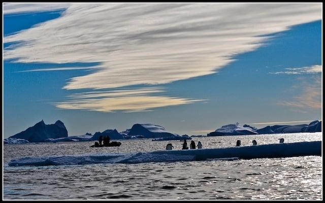 Icebergs 10