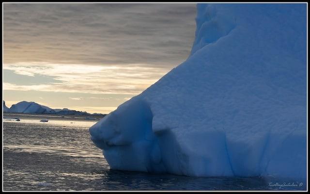 Icebergs 16