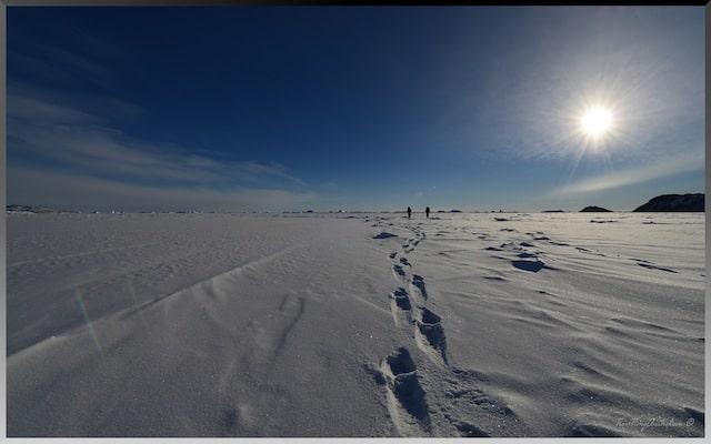 Sea ice Antarctica Davis Station
