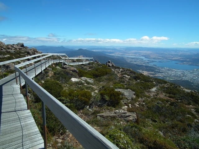 Mt-Wellington-summit