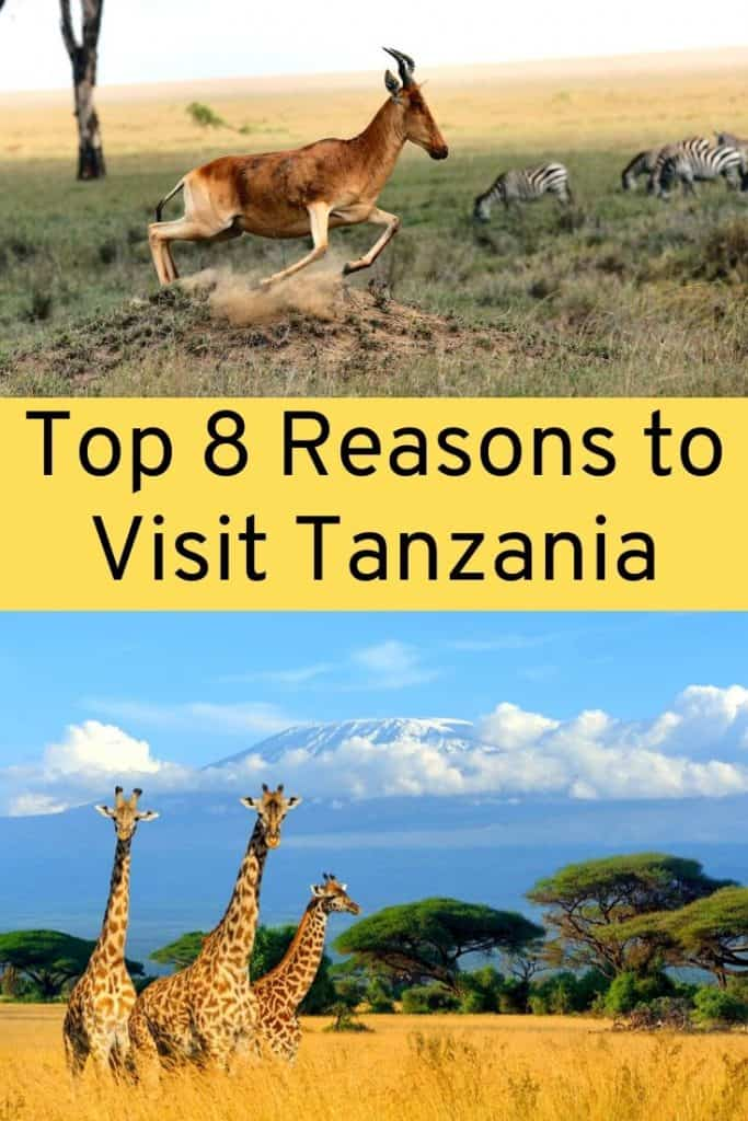 things to do in Tanzania