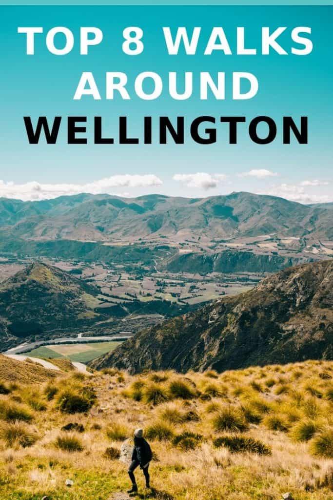 best walks around Wellington