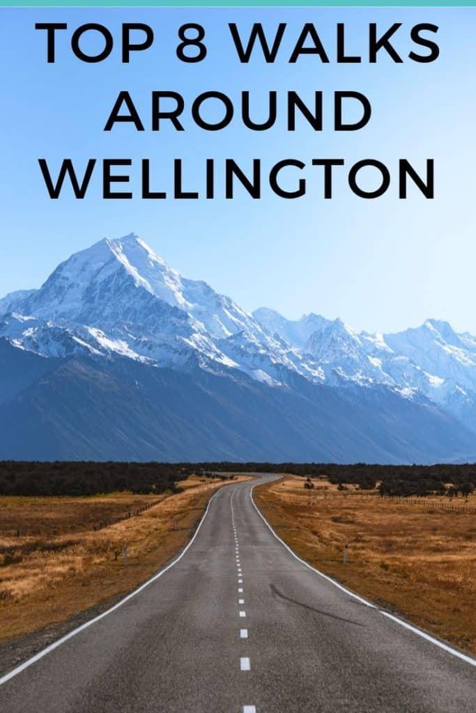 top 8 walks nearby Wellington, New Zealand