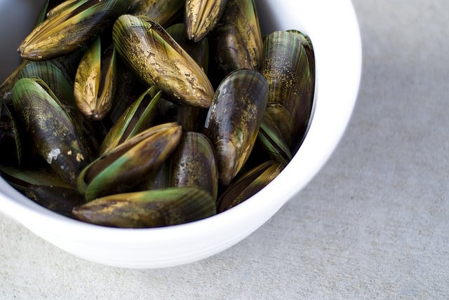 Green-lipped mussels from NZ