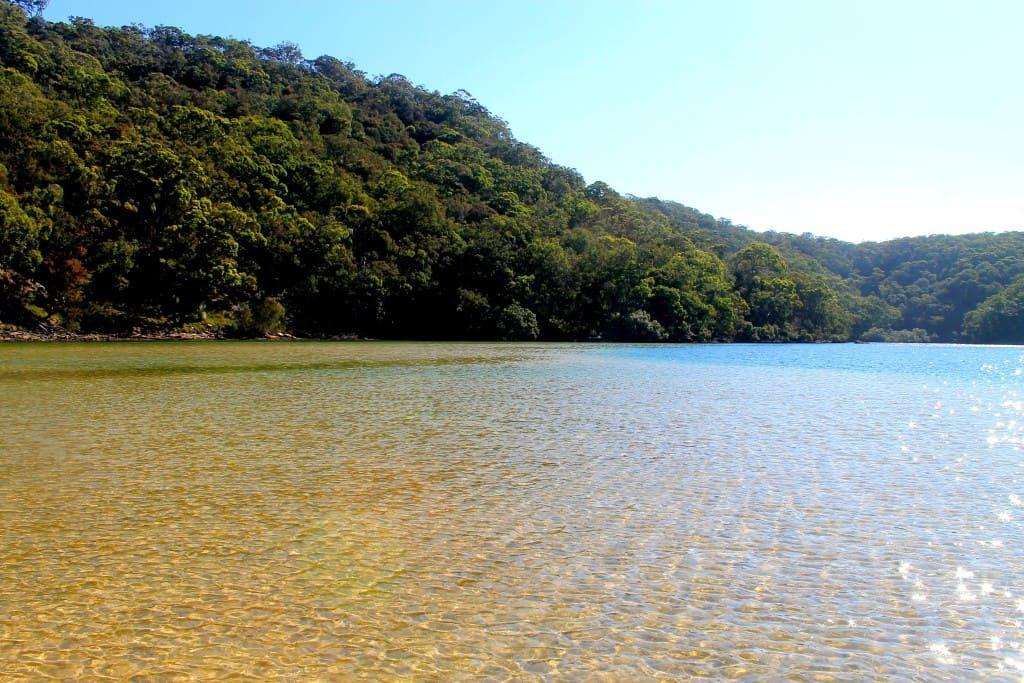 Ku-Ring Gai Chase National Park - New South Wales, Australia