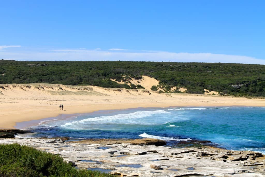 The Royal National Park in New South Wales, Australia