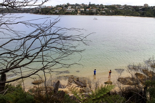 Manly Scenic Walk in Sydney, Australia