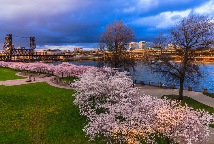 Portland – What To Do And The Best Places To Stay In The City