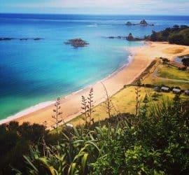 Best camping spots in New Zealand: Elliot's Bay