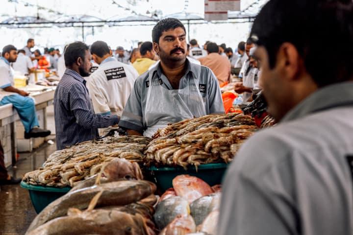waterfront fish market in dubai